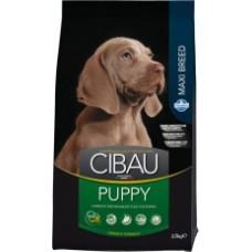 Cibau корм для щенков крупных и гигантских пород(Puppy Maxi)