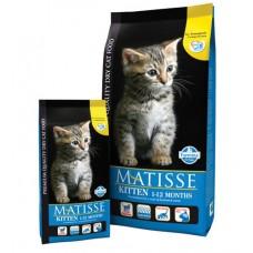 Matisse корм для котят с 2 месячного возраста